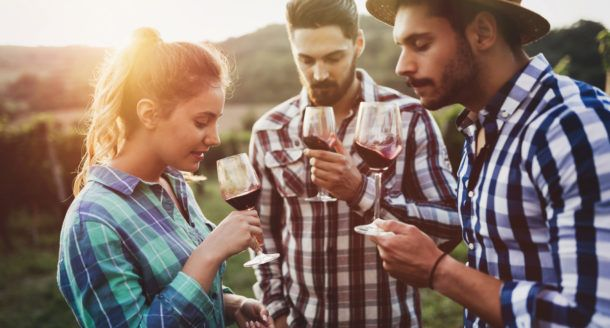 Dégustation de vin, cours ou visite de vignoble, découvrez comment ravir les amateurs de vin