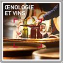 Œnologie et vins