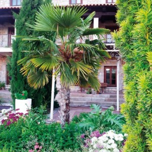 Hotel Rural San Pelayo****