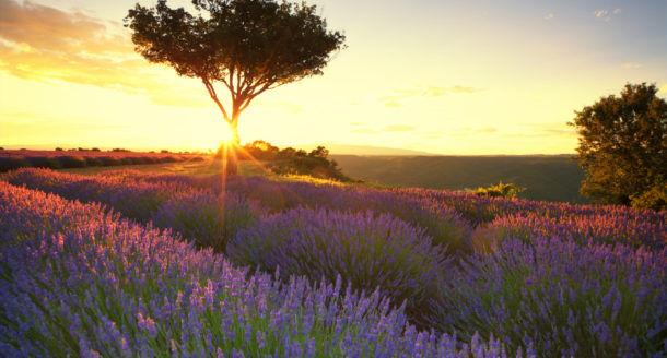 Week-end en couple : les plus beaux spots du Sud de la France