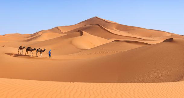 Idée vacances pour le Nouvel An, en route pour le Maroc!