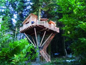 cabane dans les arbres Ardèche