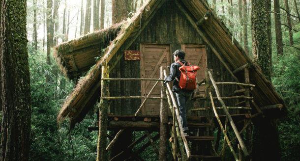 Vivre un week-end insolite dans une cabane dans les arbres : une expérience extraordinaire