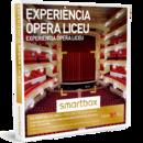 Experiencia Ópera Liceu