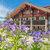 Rinderberg Swiss Alpine Lodge***