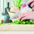 Clase de cocina con degustación