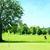 18 Holes of Golf