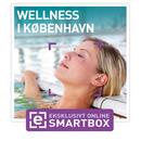 Wellness i København