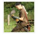 Rovfugleshow for hele familien hos Ørnereservatet i Bindslev