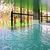 Senator Banús Spa Hotel*****
