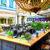 Bücheli – caffé bar lounge