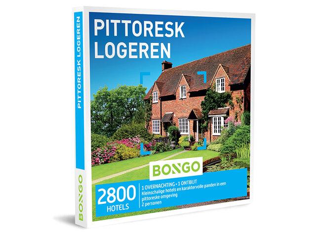 Pittoresk Logeren