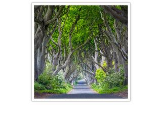 Tour Il Trono di Spade® per 2 persone nell\'Irlanda del Nord