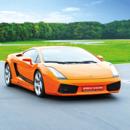 Passion pilotage - Lamborghini