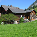Die Schweiz erleben: 1 bezaubernde Nacht in einem gemütlichen B&B