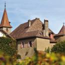 Le charme de la Suisse : 1 nuit avec petit-déjeuner au Château Rochefort