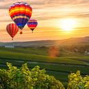 Adembenemende ballonvlucht voor 2 personen
