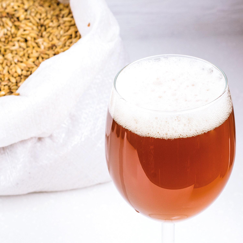 Smartbox |Kit de cerveza artesana Family Beer con chapadora y 12 botellas Ringwood