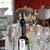 Chhat Food & Winebar