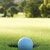 Golflektion