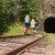 Järnvägsföreningen Dellenbanans Vänner