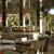 Adonis Sanary Grand Hôtel des Bains**