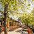 Badhotel Rockanje & Brasserie Lodgers