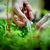Plant Power Food