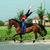 Volteggio equestre