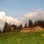 Berghotel Alp Sellamatt